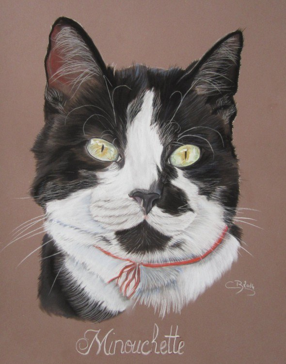portrait chat pastel
